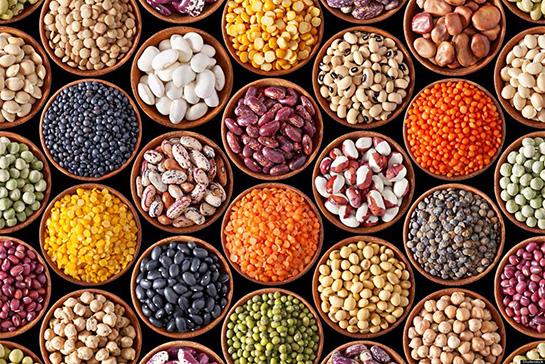 bitkisel proteinler ile ilgili görsel sonucu